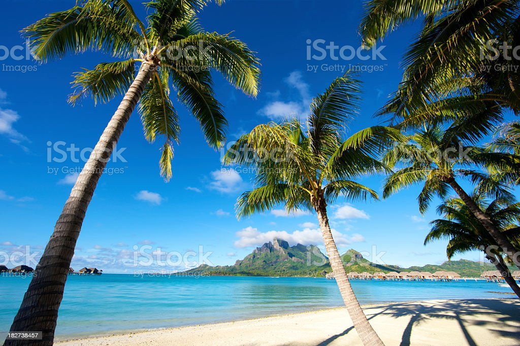 Tropical paradise in the South Pacific royalty-free stock photo