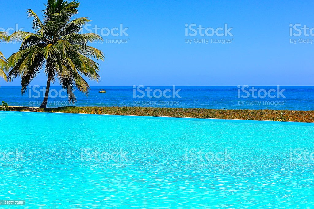 Tropical paradise:  Lonely Palm tree, infinity pool, bright turquoise beach stock photo