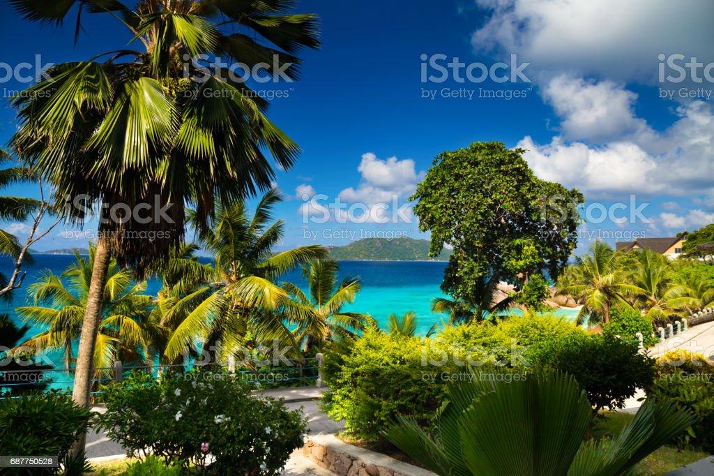 Tropical paradise on Seychelles stock photo