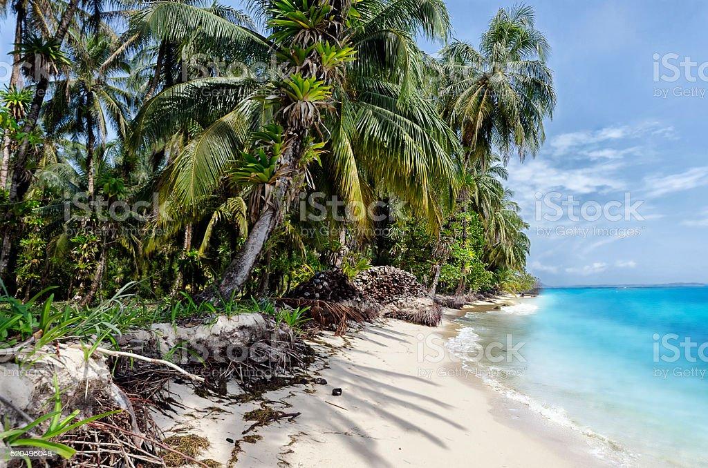 Tropical Paradise Panama stock photo