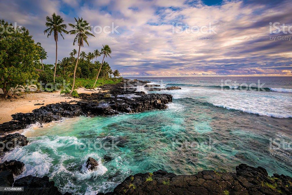 Tropical Paradise stock photo