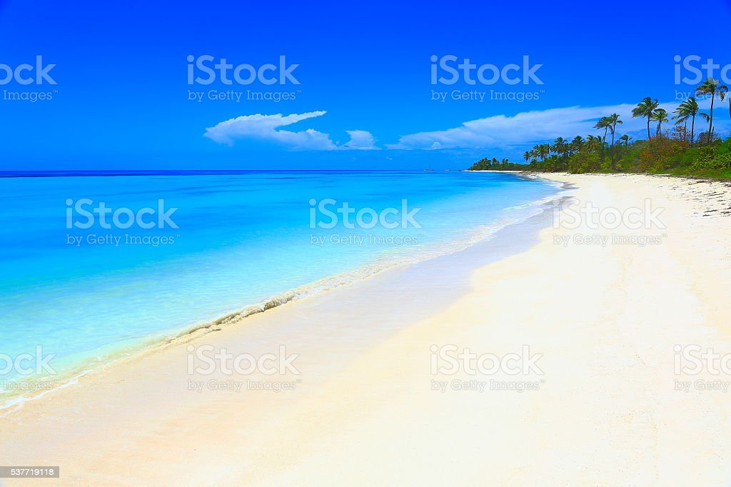 Tropical paradise relax Summer dreamscape: turquoise caribbean beach, White sand stock photo