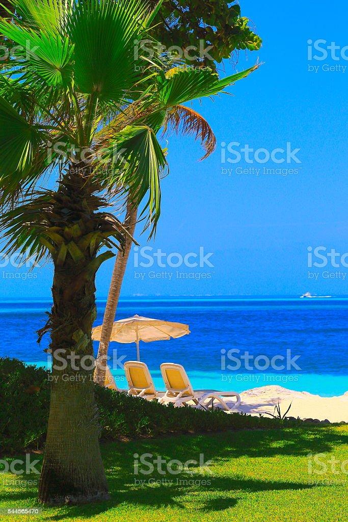 Tropical paradise sunrise: sunshade, Sunny Sandy caribbean palm trees beach stock photo