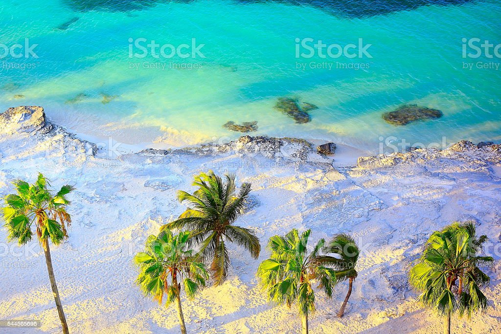 Tropical paradise sunset: Aerial Sunny Sandy caribbean palm trees beach stock photo