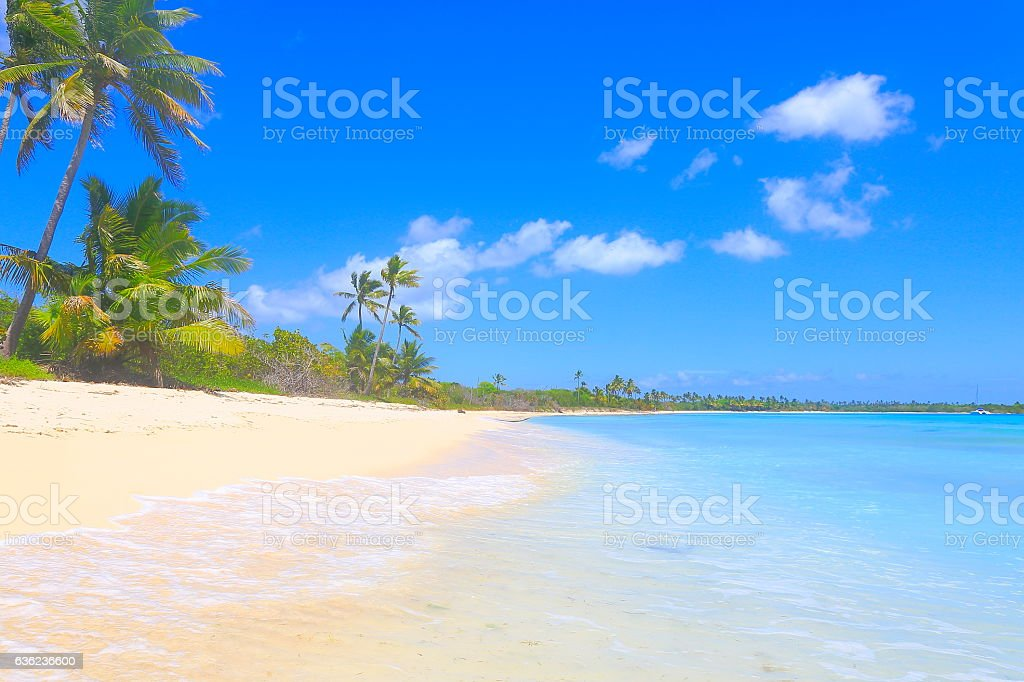 Tropical paradise: yacht, turquoise sand beach, palm trees, blue sky stock photo