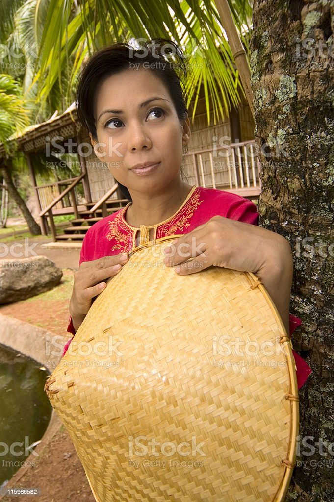 Tropical royalty-free stock photo