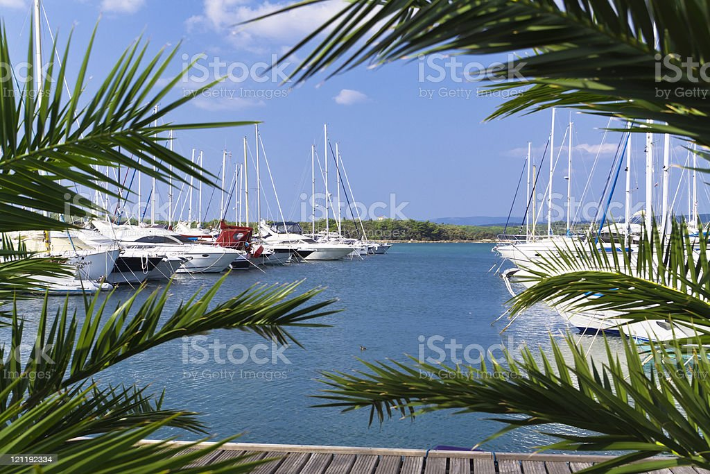 tropical port royalty-free stock photo