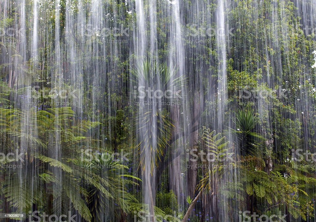 Tropical rain in the jungle royalty-free stock photo