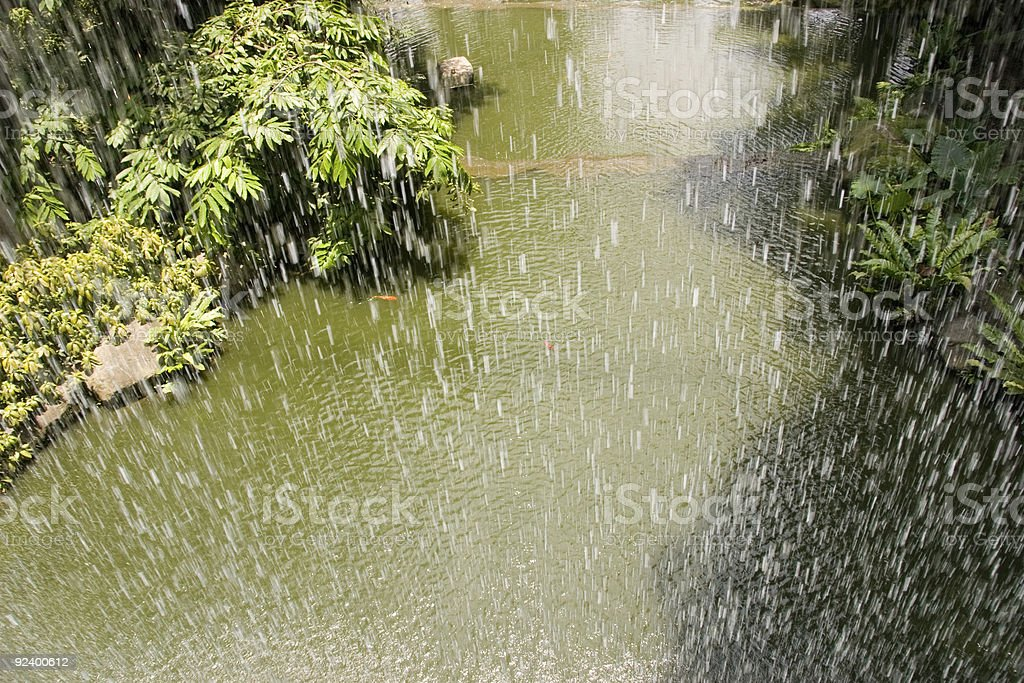 A tropical rainfall over a tropic river stock photo