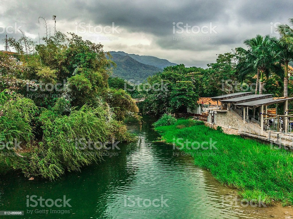 Tropical rainforest jungle in Mexico stock photo