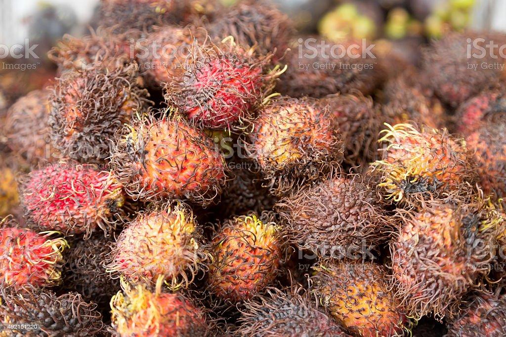 Tropische Rambutan Obst Lizenzfreies stock-foto