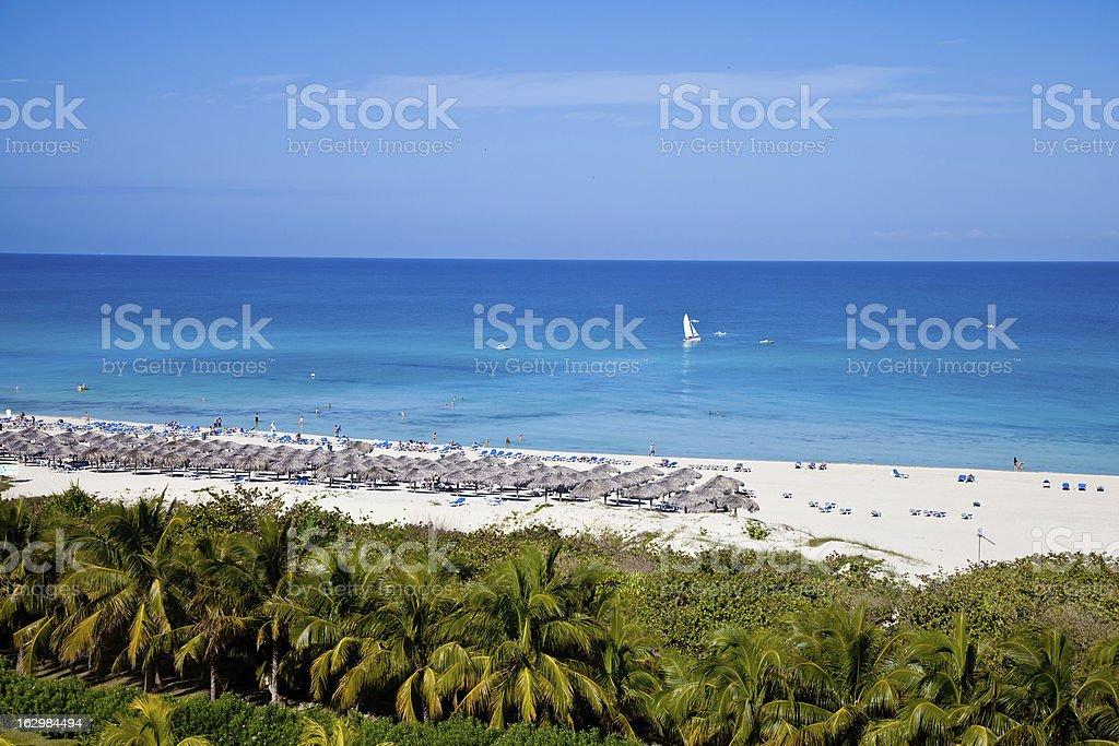 Tropical resort landscape stock photo