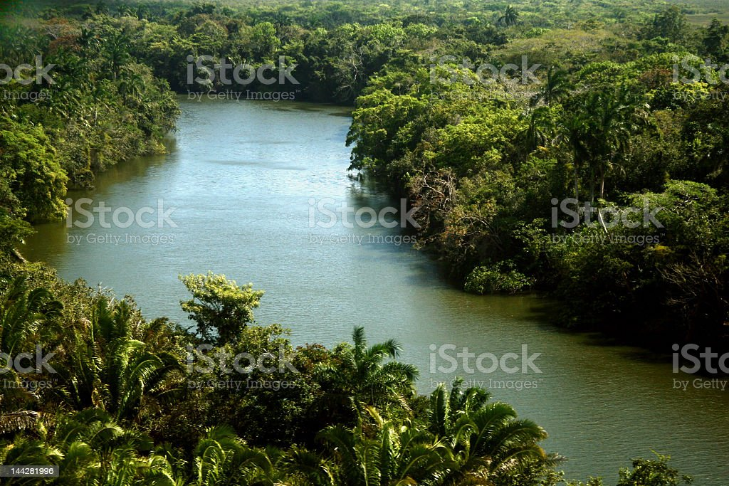 Tropical river and aerial views of the rainforests of Africa royalty-free stock photo