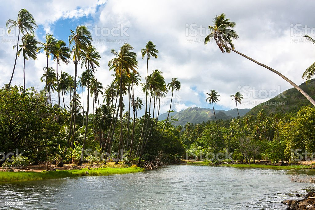 Tropical River in Polynesian Island stock photo