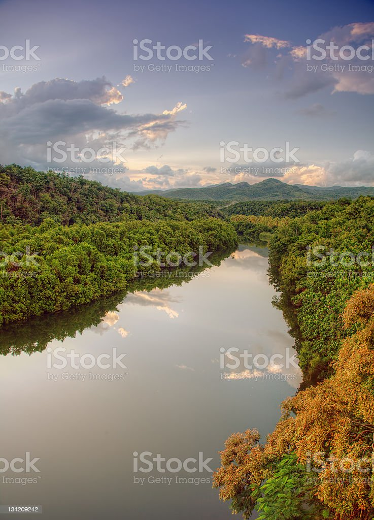tropical river royalty-free stock photo
