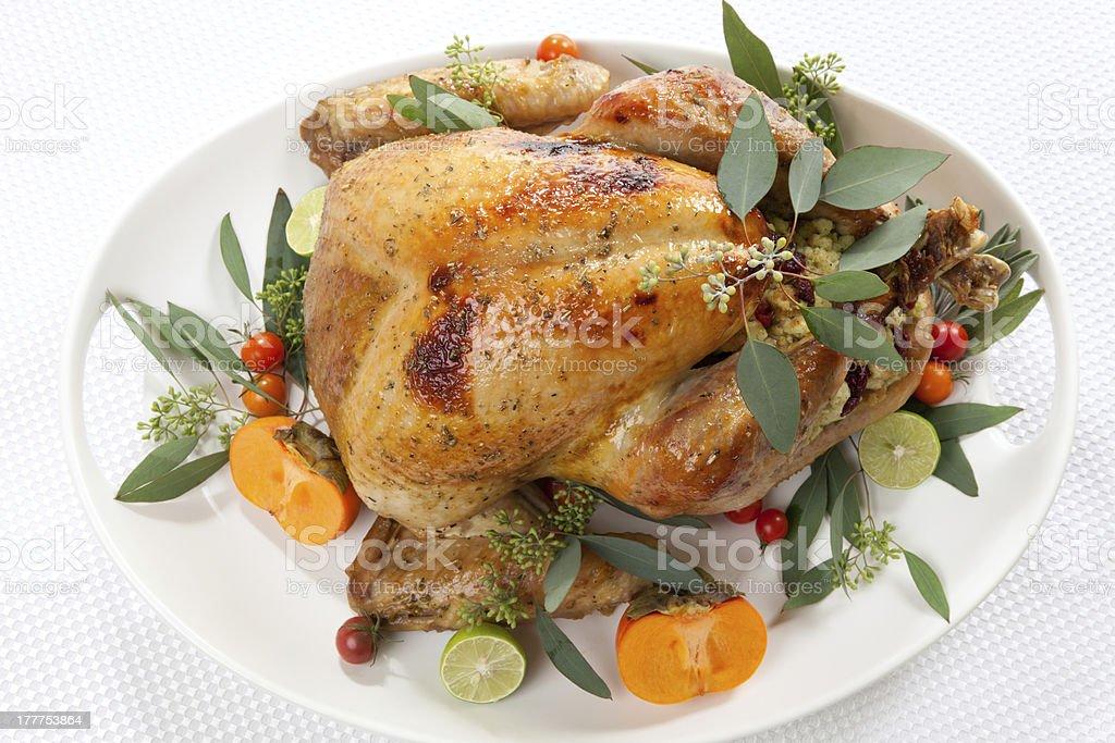 Tropical Roasted Turkey on white stock photo