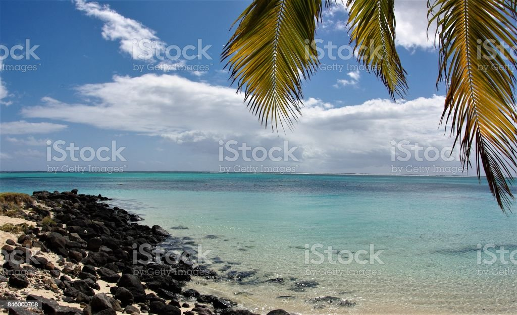 Tropical Rocks & Tropical Roots - Le Morne, Mauritius stock photo