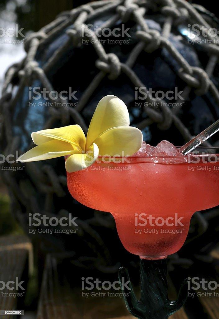 Le Punch Tropical photo libre de droits
