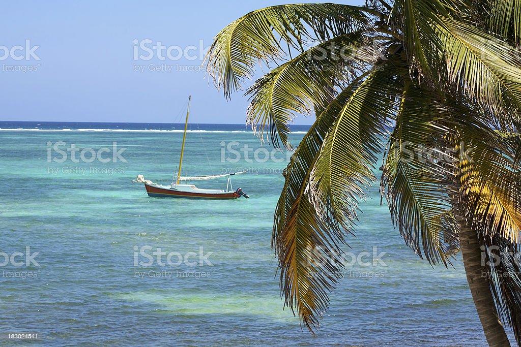 tropical sail royalty-free stock photo