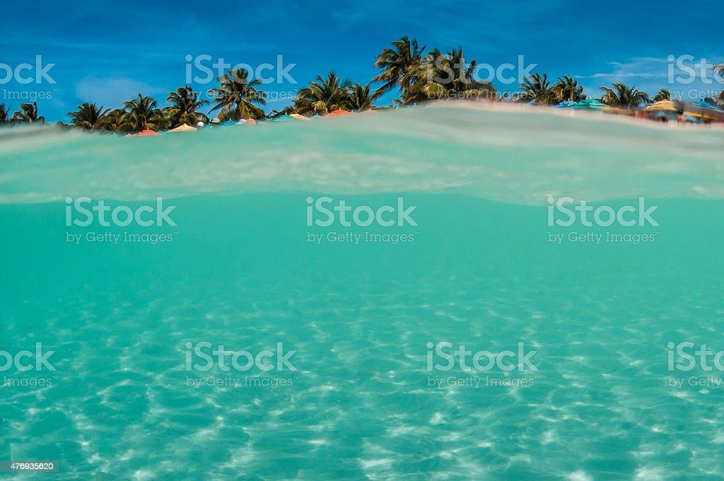 Tropical sand beach & coconut tree stock photo