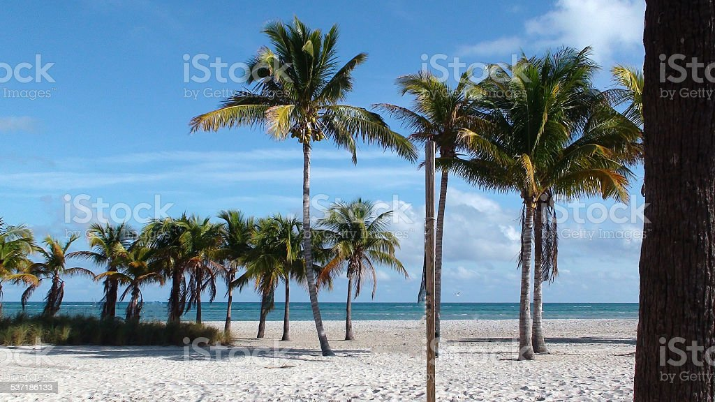 Tropical Sands stock photo