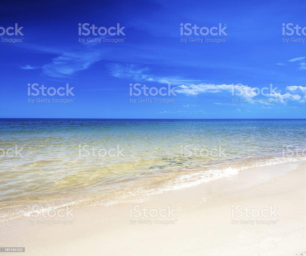 Tropical Sandy Beach - Ocean Shore royalty-free stock photo