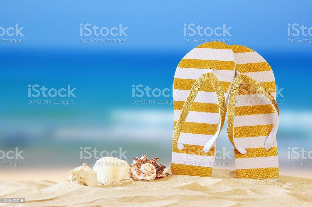 tropical sandy beach, sea shells and flip flops stock photo