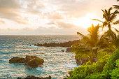 Tropical Scenic Black Sand Beach Hana Maui Hawaii Travel Destinations