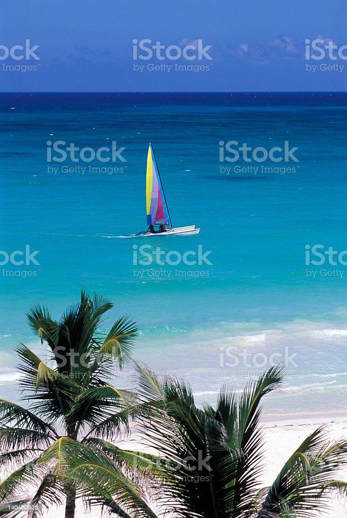 tropical sea, palm and sailboat royalty-free stock photo