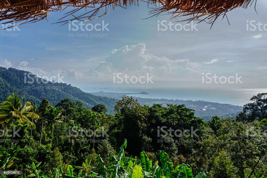 Tropical sea view from hill stock photo
