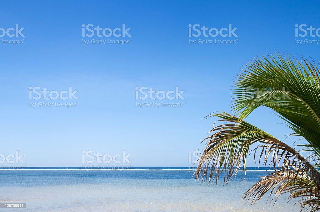 Tropical seaside stock photo