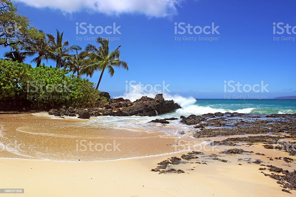 Tropical Secluded Beach Hawaii stock photo