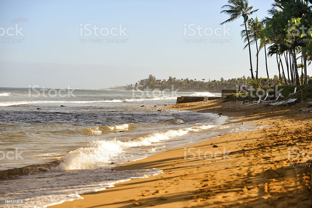 Tropical Shore in Morning Times stock photo