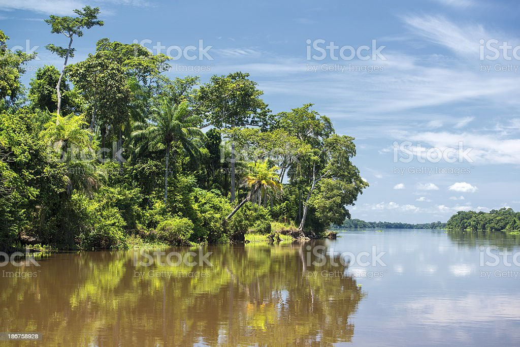 A tropical shoreline reflected in waters of the Congo River stock photo