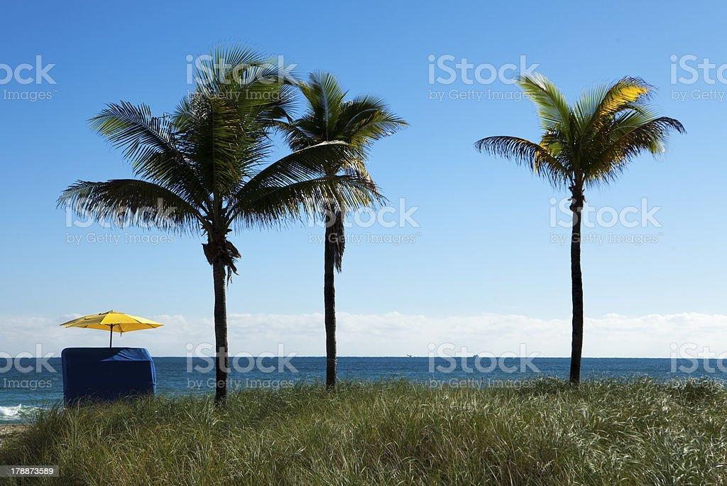 Tropical Solitude With Umbrella royalty-free stock photo