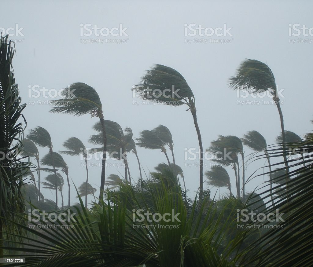 tropical storm stock photo