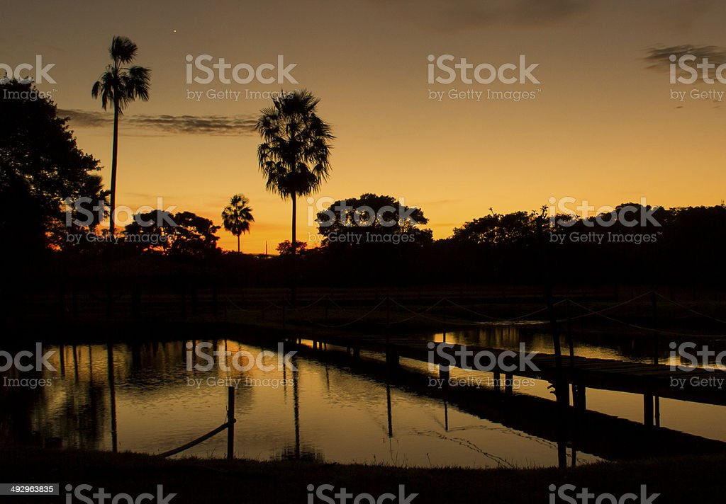 Tropical Sunrise stock photo