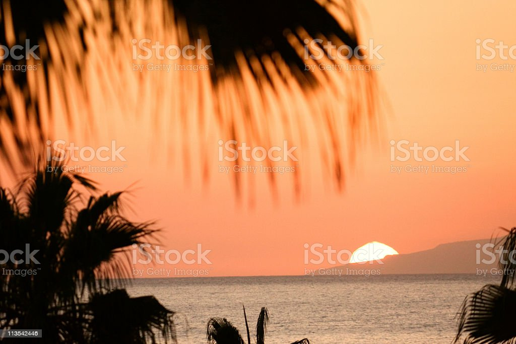 Tropical sunset, Canary Islands stock photo