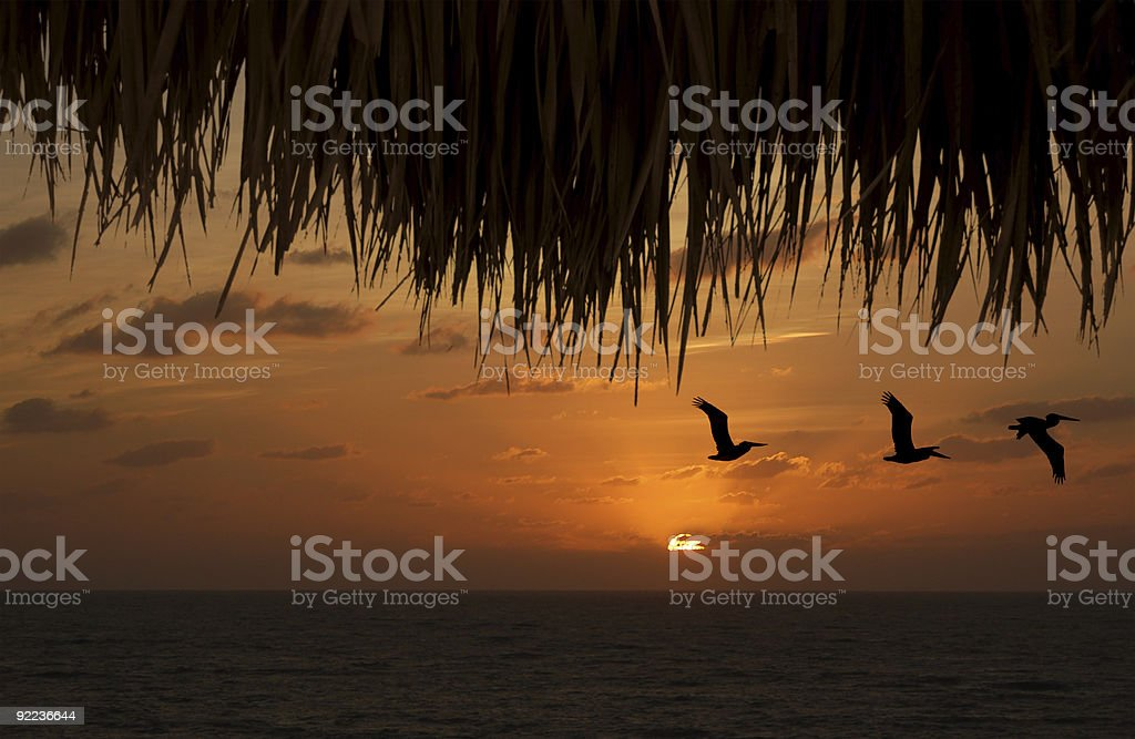 tropical sunset from my tiki hut royalty-free stock photo