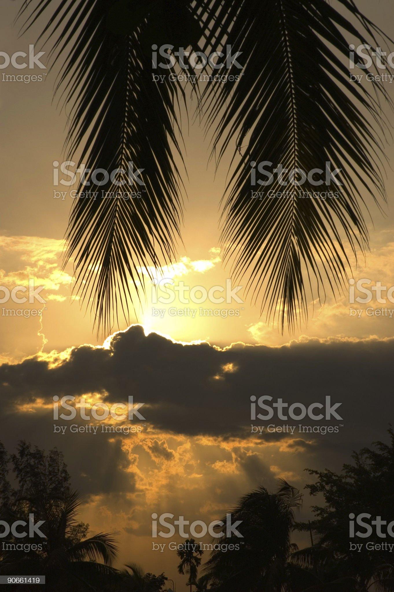 Tropical sunset scene royalty-free stock photo