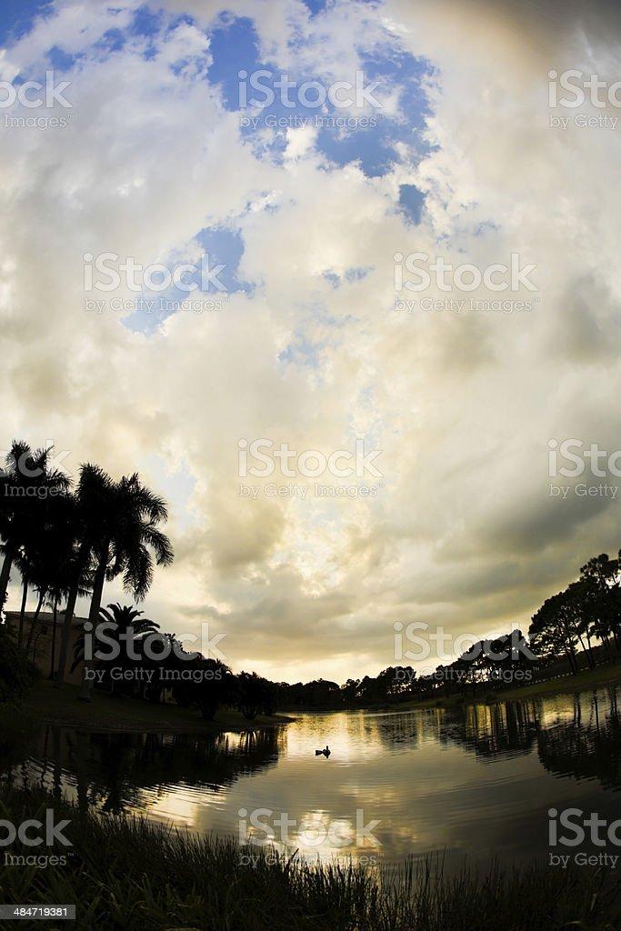 Tropical Sunset, Viewed Through Fish Eye Lens royalty-free stock photo