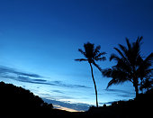 tropical sunset with silhouette palm trees