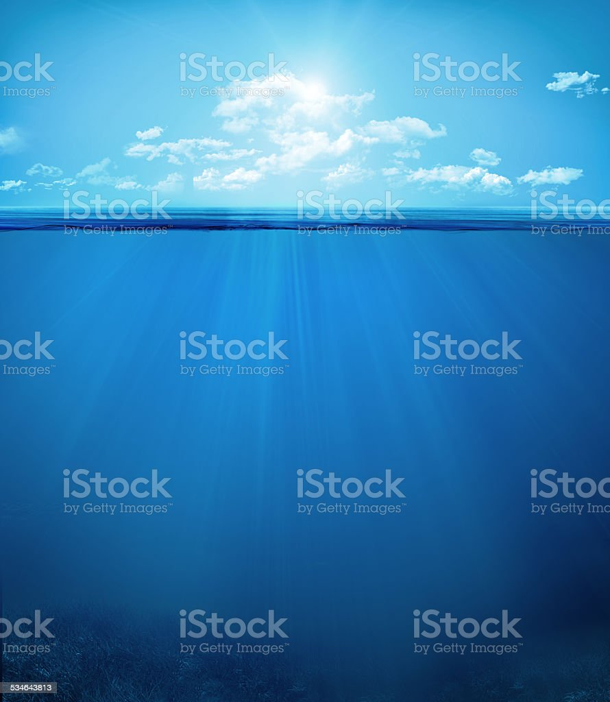 tropical underwater scene stock photo