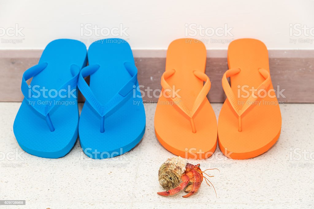 Tropical vacation and travel concept stock photo