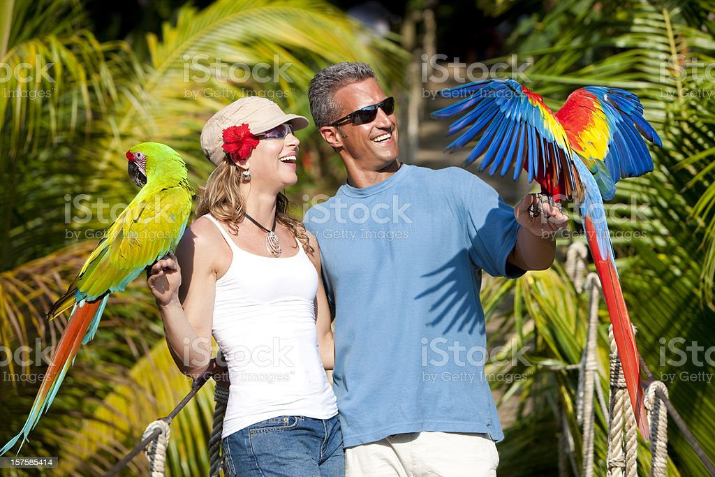 Tropical Vacation: Couple on Rope Bridge with Macaws royalty-free stock photo