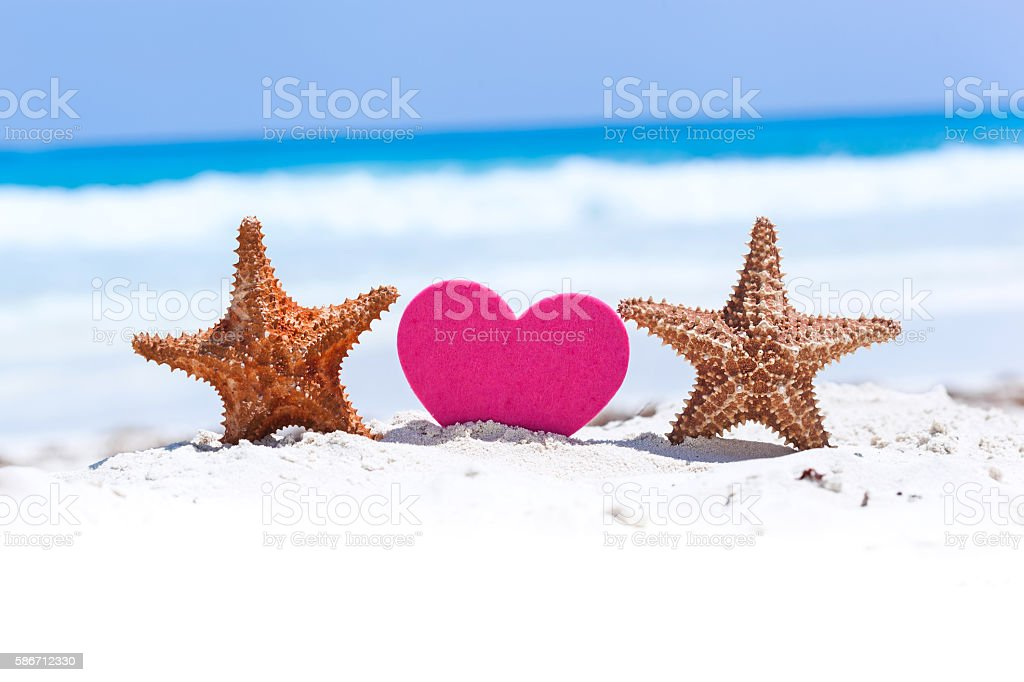 Tropical Valentines Day romantic card stock photo