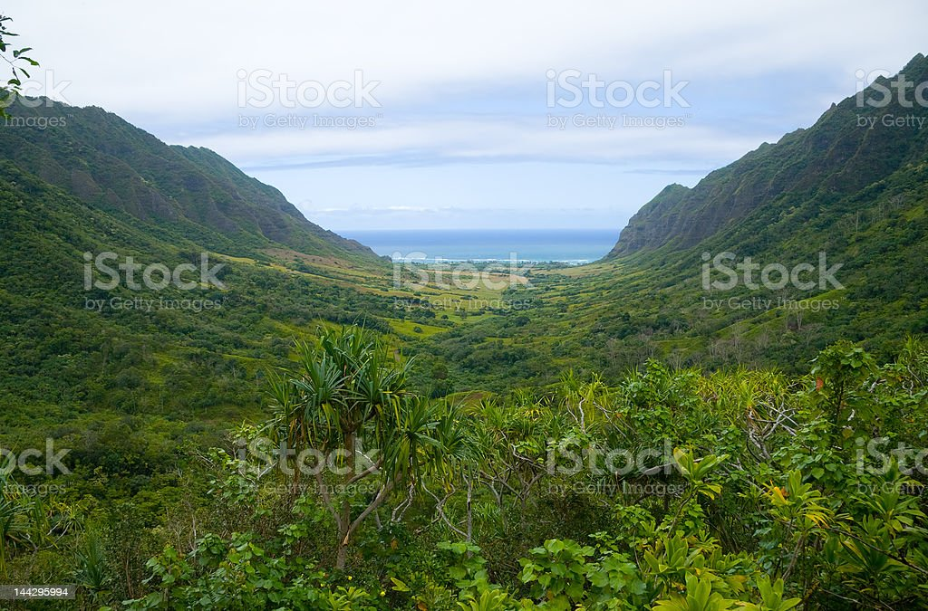 Tropical Valley stock photo