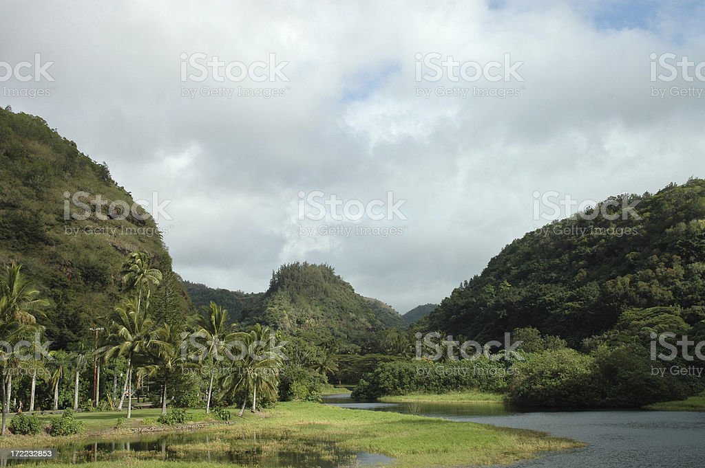 Tropical Valley royalty-free stock photo
