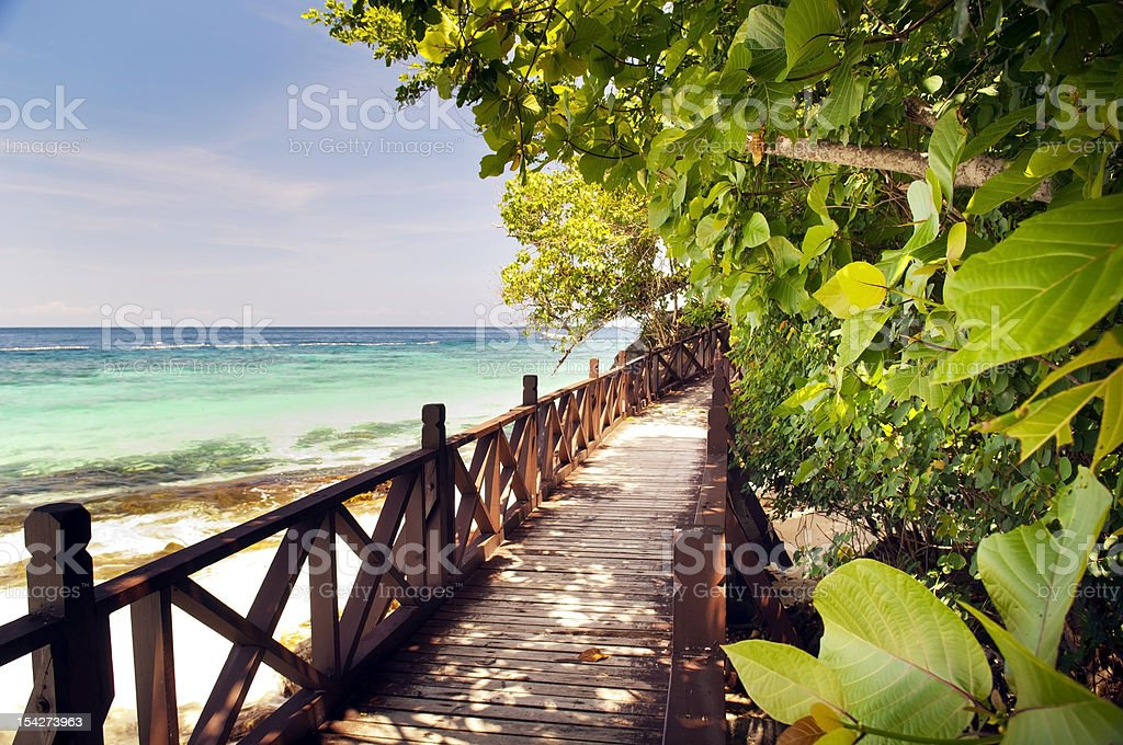 Tropical Walkway stock photo