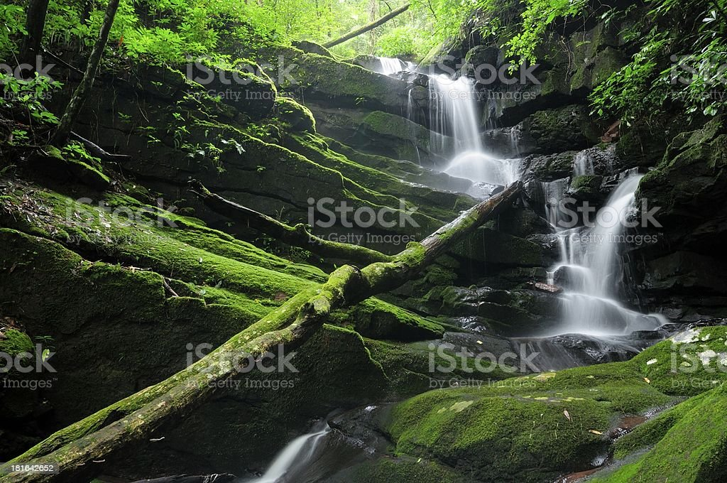 Tropical waterfall at the rain forest royalty-free stock photo